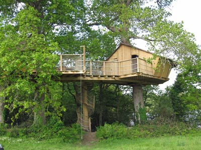 Tree House to Rent
