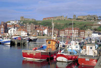 Visit the quaint fishing village of Whitby