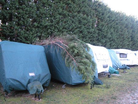 The fallen tree landed on Mike's caravan in storage